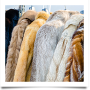 U.S. – City of San Francisco Bans Sale of Fur and Fur Products
